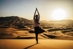 Serene woman standing in yoga tree pose in sunny sandy desert, Sahara, Moroccoの写真素材 [FYI02192067]