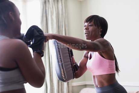 Mother and daughter boxingの写真素材 [FYI02192095]