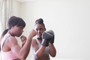 Mother teaching daughter boxingの写真素材 [FYI02192264]