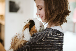 Girl holding cute, long haired guinea pigの写真素材 [FYI02192443]
