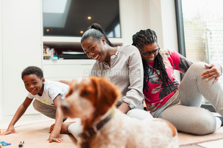 Multi-generation family playing with dog in living roomの写真素材 [FYI02192519]