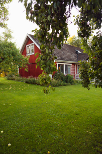 Sweden, Smaland, Klacklinge, Small house and domestic gardenの写真素材 [FYI02192668]