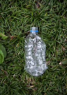 Crushed plastic bottle on grassの写真素材 [FYI02193369]