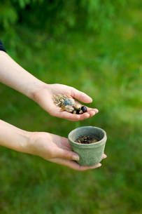 Finland, Salo, Human hand holding flower pot and seedの写真素材 [FYI02193572]