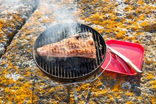 Sweden, Sodermanland, Stockholm Archipelago, Varmdo, Steak on barbecue grillの写真素材 [FYI02193632]