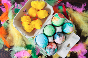 Finland, Elevated view of painted Easter eggs and baby chickの写真素材 [FYI02193685]