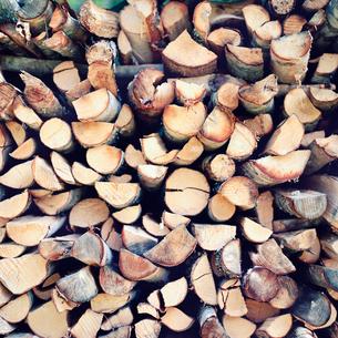 Wood pileの写真素材 [FYI02193743]
