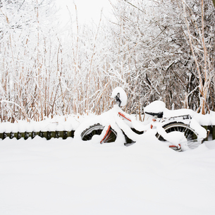 Finland, Helsingfors, Bicycle in snowy parkの写真素材 [FYI02193746]