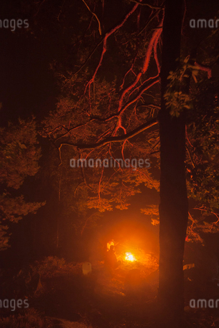 Sweden, Blekinge, Men sitting at camp fireの写真素材 [FYI02194577]