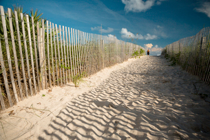 USA, Florida, Miami, Sandy footpath on beach at sunny dayの写真素材 [FYI02194777]