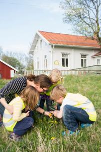Sweden, Vastergotland, Olofstorp, Bergum, Woman taking care of children (2-3, 4-5, 6-7) outdoorsの写真素材 [FYI02195332]