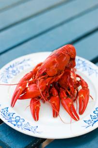 Sweden, Dalarna, Svardsjo, Cooked crayfish on plateの写真素材 [FYI02195494]