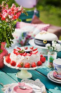 Sweden, Sodermanland, Strangnas, Close up of cake on table in gardenの写真素材 [FYI02195627]