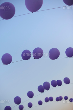 Picture of balloons in a rowの写真素材 [FYI02195630]