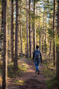 Sweden, Vastergotland, Lerum, Rear view of hiker in forestの写真素材 [FYI02195789]