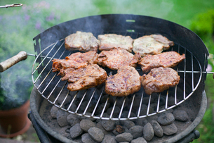 Germany, Gifhorn, Barbecue grillの写真素材 [FYI02195899]
