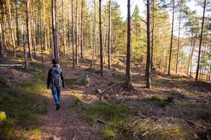 Sweden, Vastergotland, Lerum, Rear view of hiker in forestの写真素材 [FYI02195949]