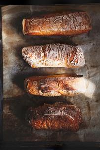 Homemade bread on trayの写真素材 [FYI02196123]