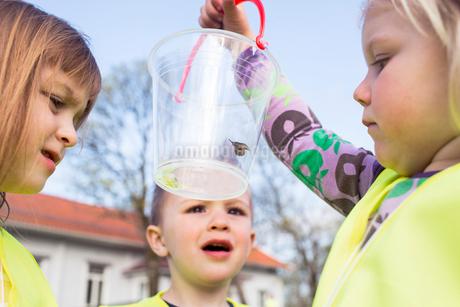 Sweden, Vastergotland, Olofstorp, Bergum, Kindergarten children (2-3, 4-5) learning outdoorsの写真素材 [FYI02196422]
