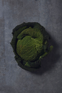 Savoy cabbage on tableの写真素材 [FYI02196430]