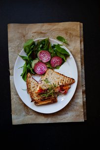 Studio shot of sandwich toasted with beets and spinachの写真素材 [FYI02196537]