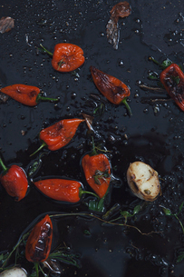 Studio shot of red chili pepper on frying panの写真素材 [FYI02197197]