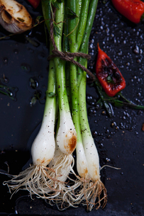 Studio shot of spring onion with red chili pepper on frying panの写真素材 [FYI02197332]