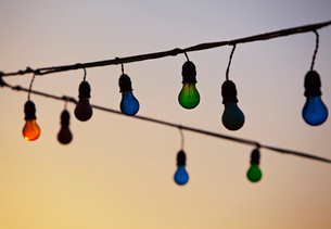Light bulbs hangingの写真素材 [FYI02197481]