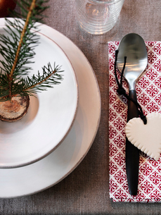 Close up of plate with christmas decorationの写真素材 [FYI02197587]