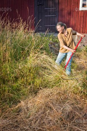 Sweden, Smaland, Alsterbro, Female farmer cutting grassの写真素材 [FYI02197664]