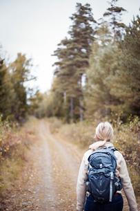 Sweden, Vastergotland, Lerum, Female backpacker walking away along earth road leading through forestの写真素材 [FYI02197805]