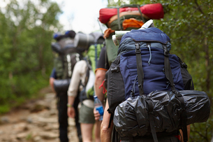 Sweden, Jamtland, People hiking with backpacksの写真素材 [FYI02197936]