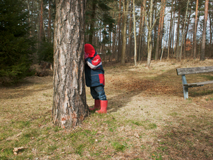 Sweden, Smaland, Horn, Boy (4-5) playing seek and hide amidst treesの写真素材 [FYI02198353]