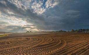 Sweden, Sodermanland, Stigtomta, Agricultural landscapeの写真素材 [FYI02198438]