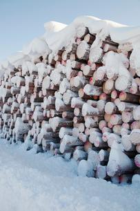 Finland, Lapland, Pello, Stack of logsの写真素材 [FYI02198915]