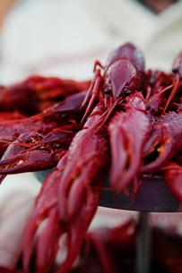 Sweden, Crayfish on marketの写真素材 [FYI02199085]