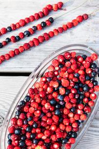 Sweden, Smaland, Wild strawberries and blueberriesの写真素材 [FYI02199446]