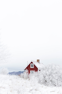 Sweden, Ostergotland, House and trees in winterの写真素材 [FYI02200509]