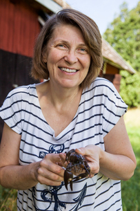 Sweden, Uppland, Smiling woman holding crayfishの写真素材 [FYI02200517]
