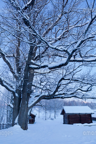 Sweden, Dalarna, Mora, Wooden houses covered with snowの写真素材 [FYI02201534]
