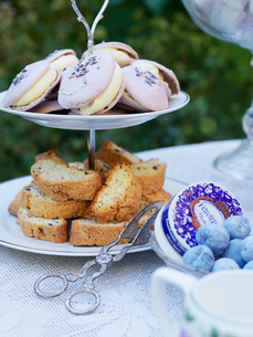 Sweden, Macaroons and biscottis on cake standの写真素材 [FYI02201581]