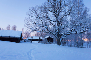 Sweden, Dalarna, Mora, Wooden houses covered with snowの写真素材 [FYI02201604]