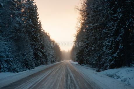 Sweden, Vastmanland, Bergslagen, Silvergruvan, Road in winter forestの写真素材 [FYI02202005]