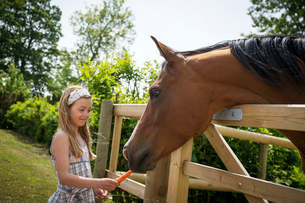Sweden, Skane, Girl (8-9) feeding horse with carrotの写真素材 [FYI02202026]