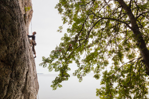 Sweden, Medelpad, Sundsvall, Mid adult man climbing cliffの写真素材 [FYI02202177]