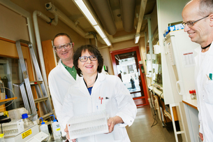 Sweden, Scientists working in labの写真素材 [FYI02202421]