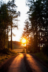 Sweden, Ostergotland, Landscape with empty road and setting sunの写真素材 [FYI02202804]