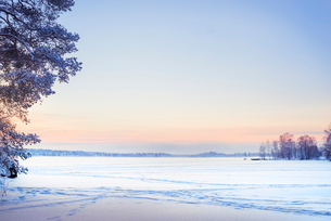 Finland, Pirkanmaa, Tampere, Winter scene with snow plain at duskの写真素材 [FYI02202951]