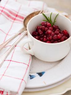 Sweden, Lingonberries in white cupの写真素材 [FYI02203055]