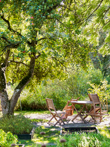 Sweden, Skane, Empty wooden table and chairs under treeの写真素材 [FYI02203418]
